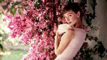 Audrey Hepburn Portraits of an Icon