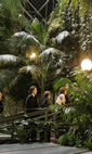 Barbican Conservatory photo