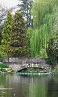 Dulwich Park photo