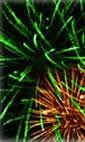 Barking Park Fireworks